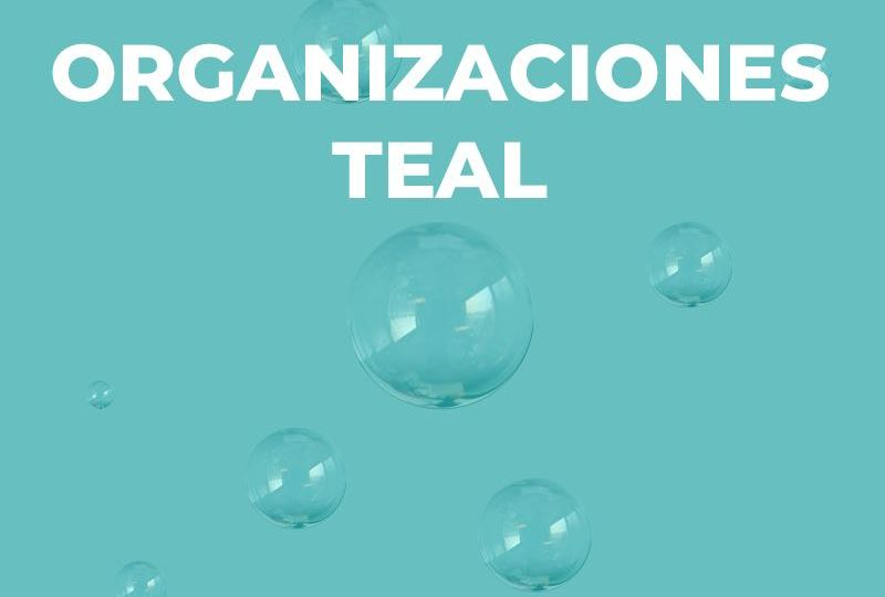 Organizaciones teal