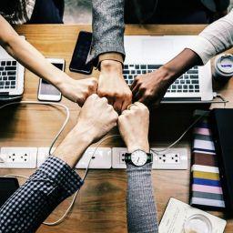 Los falsos mitos de la auto-organizacion