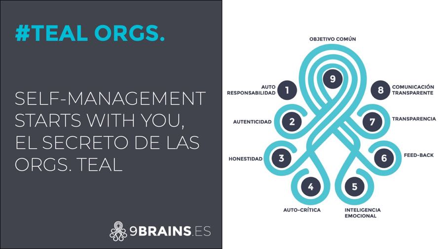 Self-management starts with you, el secreto de las organizaciones teal